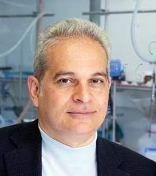 Piomelli leads new study on mast cells